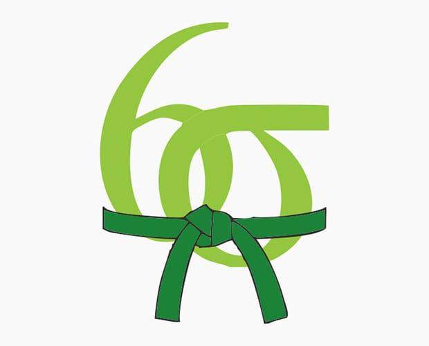 Learning Six Sigma: Green Belt